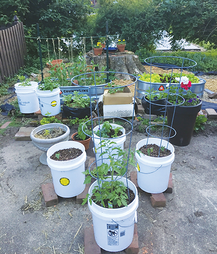 So you want to grow a garden